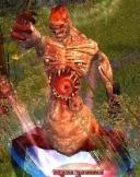 Afflicted Necromancer.jpg