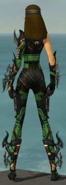Assassin Elite Kurzick Armor F dyed back.jpg