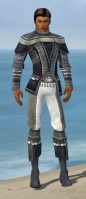Elementalist Luxon Armor M gray front.jpg