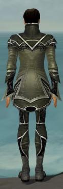 Elementalist Shing Jea Armor M gray back.jpg