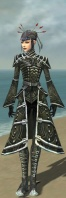 Necromancer Fanatic Armor F gray front.jpg