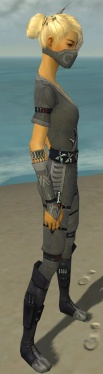 Assassin Shing Jea Armor F gray side.jpg