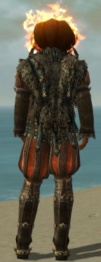 Lunatic Court Finery M dyed back.jpg