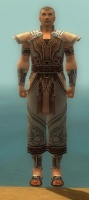 Monk Asuran Armor M gray front.jpg