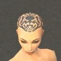 Monk Elite Sunspear Armor F gray head front.jpg