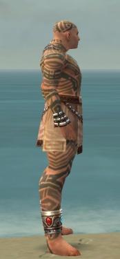 Monk Labyrinthine Armor M gray side.jpg
