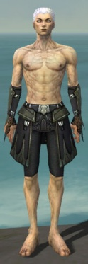 Necromancer Cabal Armor M gray arms legs front.jpg