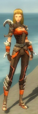Ranger Asuran Armor F dyed front.jpg