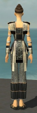 Monk Elite Sunspear Armor F gray back.jpg