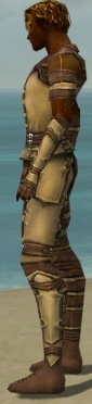Ranger Ascalon Armor M dyed side.jpg