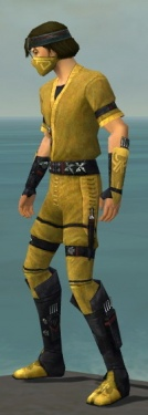 Assassin Shing Jea Armor M dyed side.jpg