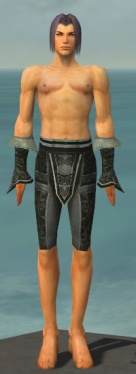 Elementalist Elite Canthan Armor M gray arms legs front.jpg
