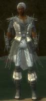 Elementalist Primeval Armor M gray front.jpg