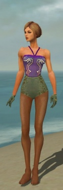 Mesmer Elite Canthan Armor F gray arms legs front.jpg