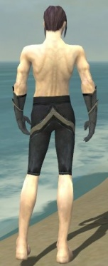 Elementalist Ascalon Armor M gray arms legs back.jpg