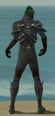 Necromancer Elite Necrotic Armor M gray chest feet back.jpg