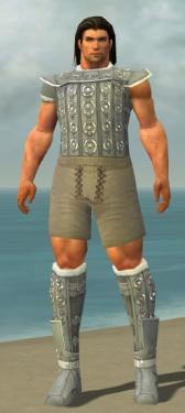 Warrior Ascalon Armor M gray chest feet front.jpg