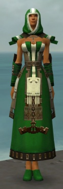 Dervish Elonian Armor F dyed front.jpg
