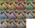 Hawkeye Hammer Dye Chart.jpg