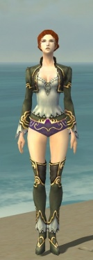 Mesmer Monument Armor F gray chest feet front.jpg