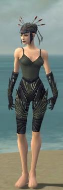 Necromancer Krytan Armor F gray arms legs front.jpg