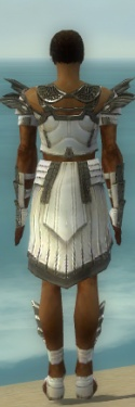 Paragon Ancient Armor M gray back.jpg