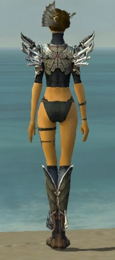 Assassin Asuran Armor F gray chest feet back.jpg