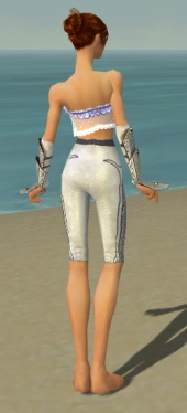 Elementalist Tyrian Armor F gray arms legs back.jpg