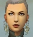 Mesmer Elite Noble Armor F gray earrings.jpg