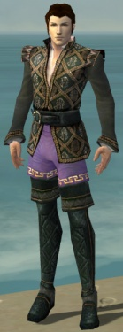 Mesmer Elite Noble Armor M gray chest feet front.jpg