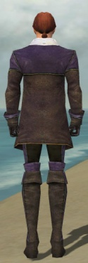 Mesmer Tyrian Armor M dyed back.jpg