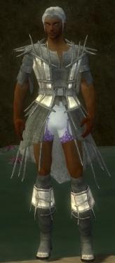 Elementalist Primeval Armor M gray chest feet front.jpg