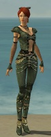 Mesmer Elite Luxon Armor F gray front.jpg