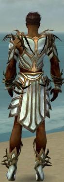 Paragon Primeval Armor M dyed back.jpg