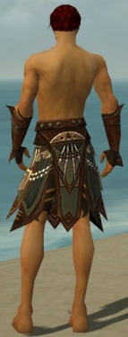 Ritualist Monument Armor M gray arms legs back.jpg