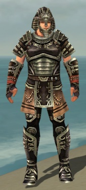 Warrior Ancient Armor M gray front.jpg