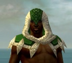 Dervish Norn Armor M dyed head front.jpg