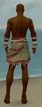Ritualist Exotic Armor M gray arms legs back.jpg