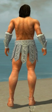 Warrior Ascalon Armor M gray arms legs back.jpg