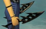 Hidesplitter's Daggers.jpg