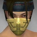 Assassin Canthan Armor M dyed head front.jpg