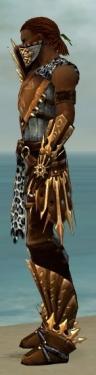 Ranger Elite Sunspear Armor M dyed side.jpg