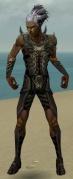 Necromancer Istani Armor M gray front.jpg