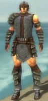 Warrior Krytan Armor M gray front.jpg