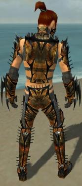 Assassin Elite Exotic Armor M gray back.jpg