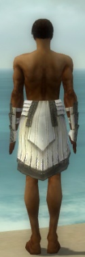 Paragon Ancient Armor M gray arms legs back.jpg