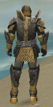 Warrior Elite Platemail Armor M dyed back.jpg