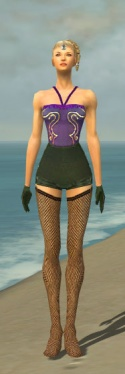 Mesmer Courtly Armor F gray arms legs front.jpg
