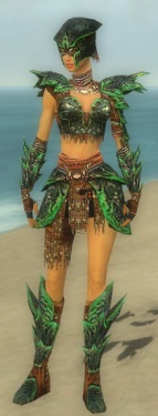 Warrior Luxon Armor F dyed front.jpg