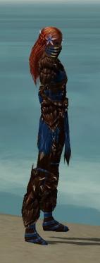 Ranger Primeval Armor F dyed side.jpg